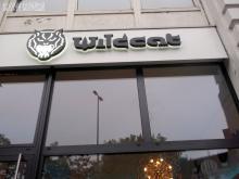 Wildcat Tattoo Hamburg, 12.10. 2.013